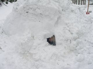 Snowcave3