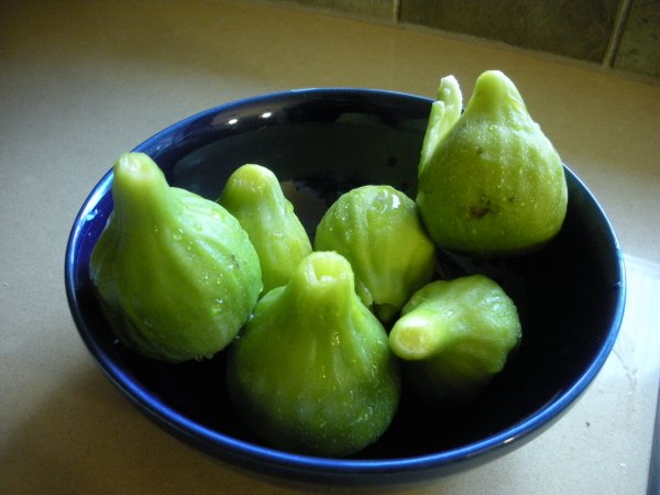 Figs0709