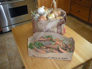 Carrotsandonions0809
