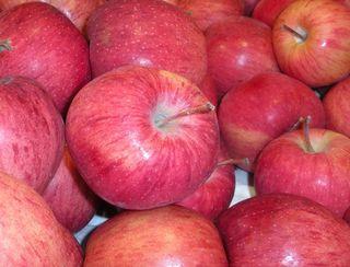 Apples2009